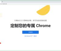 Google Chrome v89.0.4389.114绿色增强版
